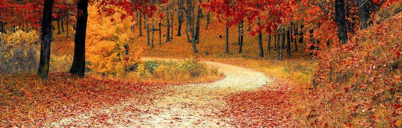 Listopad w górach